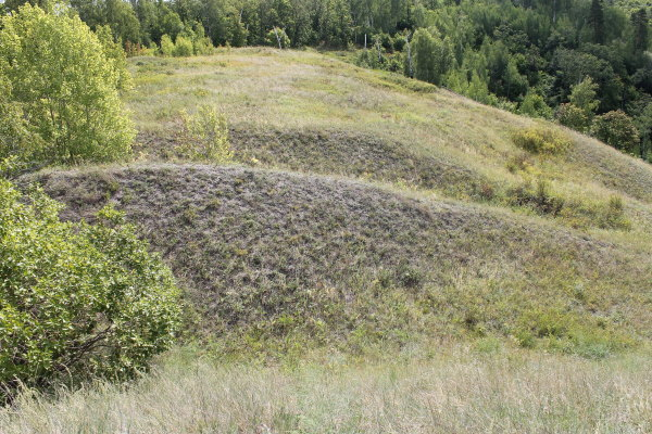 Защитные валы и рвы на Лысой горе
