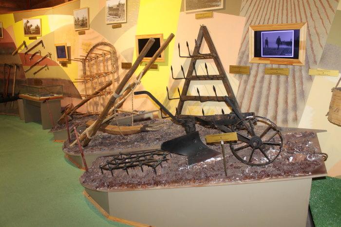 В музее хлеба