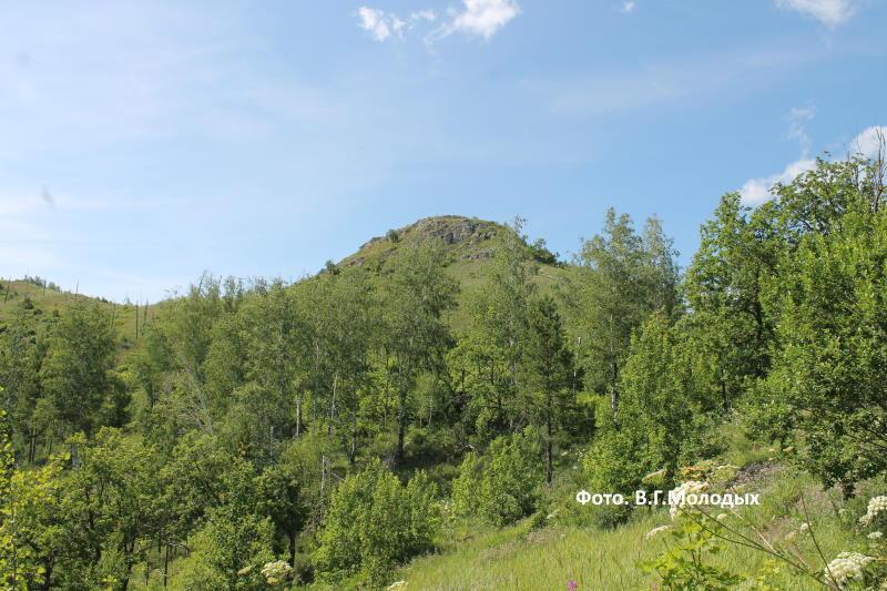 Приближаемся к горе Шишка