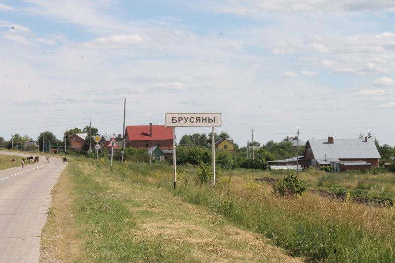 Въезд в село Брусяны