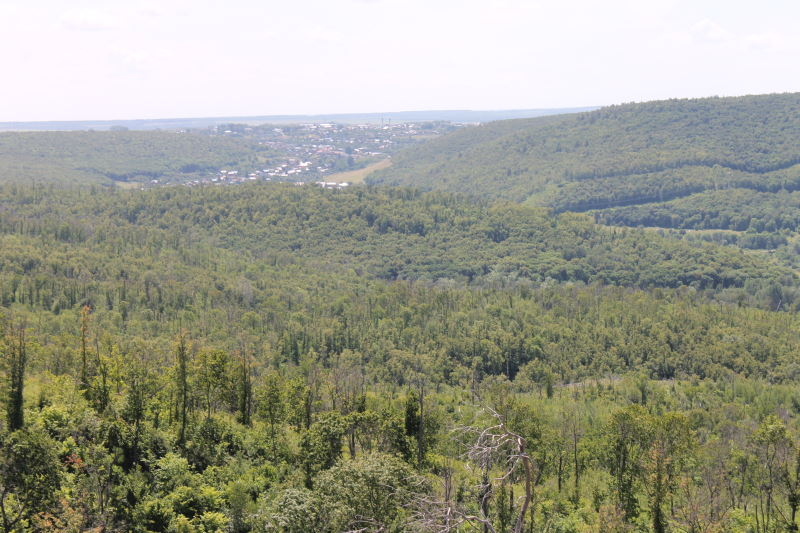 Село Жигули вид с Молодецкого кургана