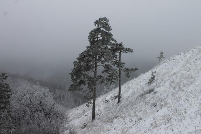 На горе Стрельная зимой